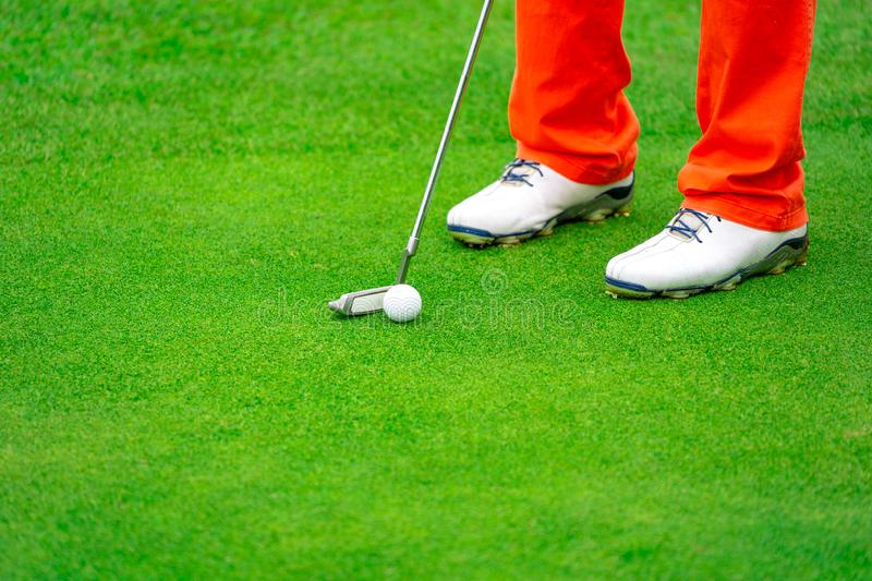 Golfer putting golf ball to hole on green field in golf course stock photos