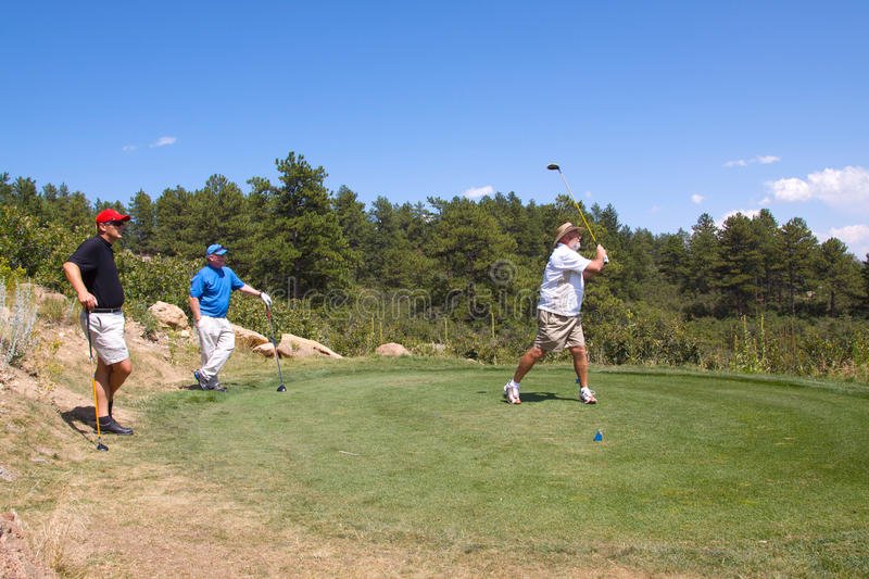 Download Golfer Teeing Off stock photo. Image of active, golf - 10540758