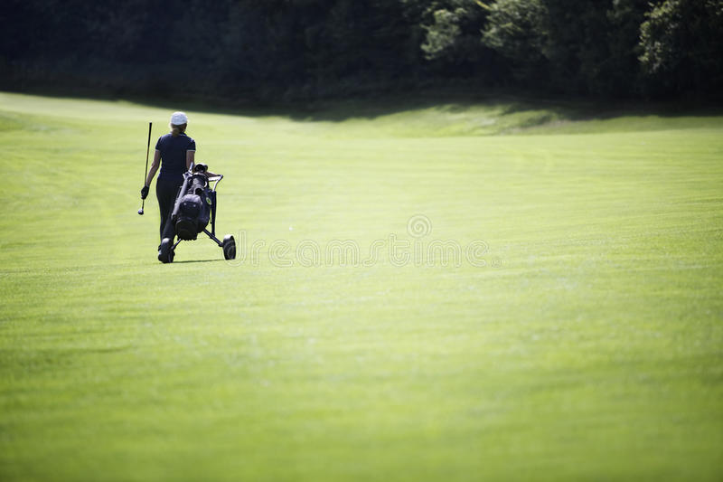 Golfer Walking On Fairway With Bag. Royalty Free Stock Photo