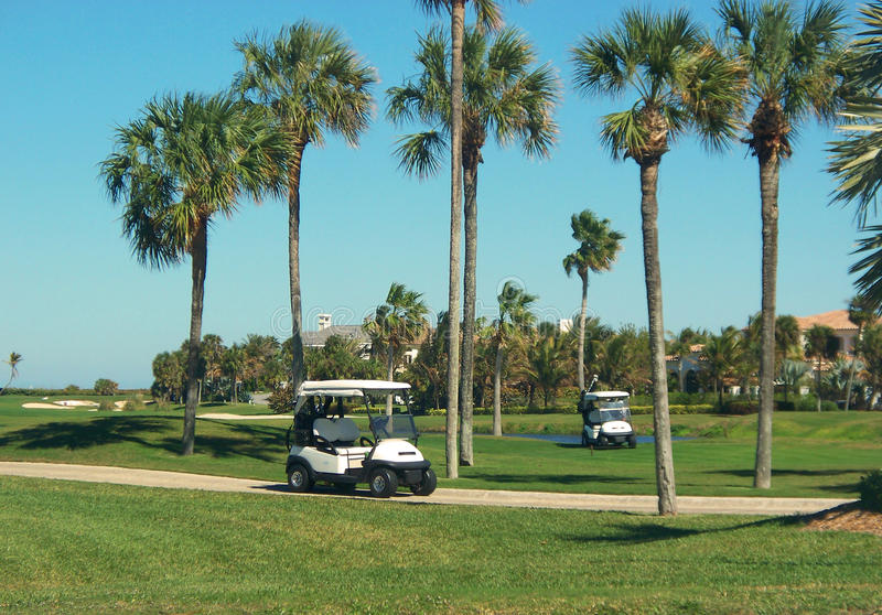 Golfers Winter Dream. Golf carts await the foursome enjoying the tropical palms and greens of this Florida winter morning stock images