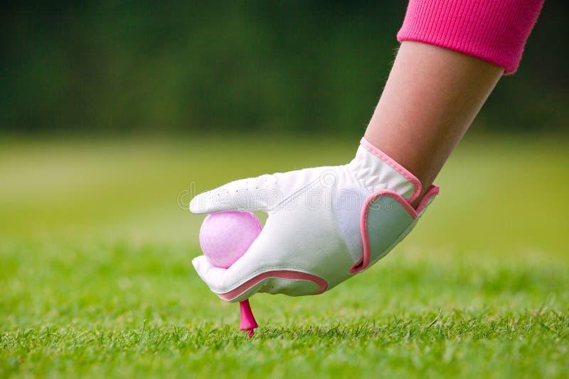 Golfeur de Madame plaçant la boule et la pièce en t roses dans le sol photos stock