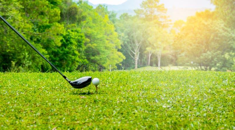 Golfeur frappant la boule de golf sur la pièce en t outre de la zone dans le terrain de golf photos libres de droits