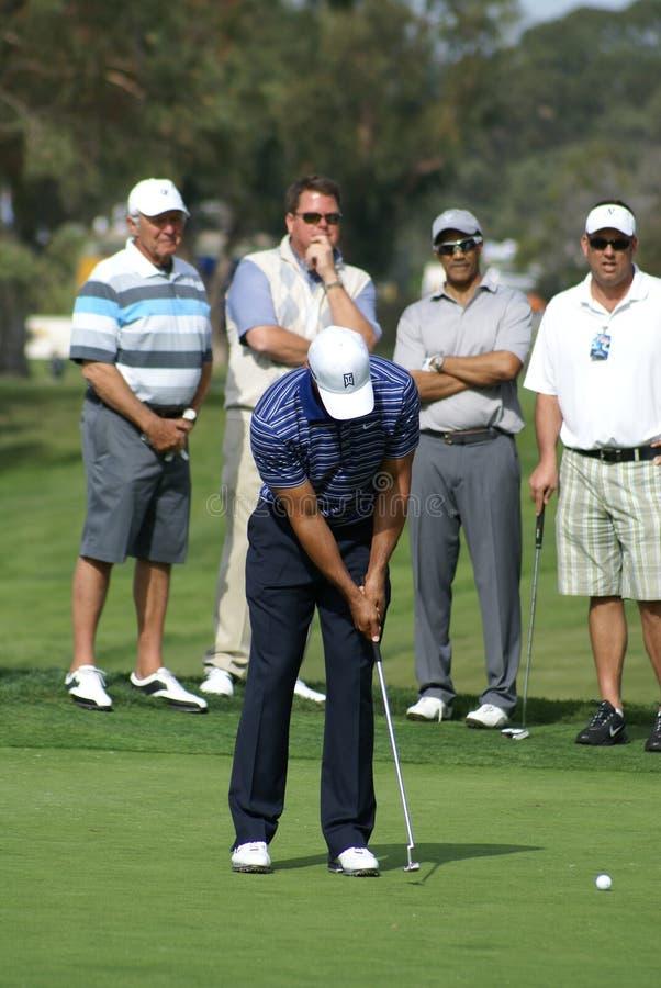 Golfeur professionnel de Tiger Woods photos stock