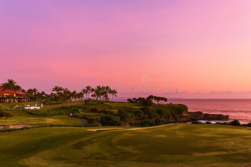 Golfgebied dichtbij Tanah-Partijtempel - Bali Indonesië royalty-vrije stock afbeelding