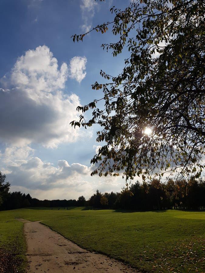 Golfgolfbanafarleder och gräsplaner arkivbilder
