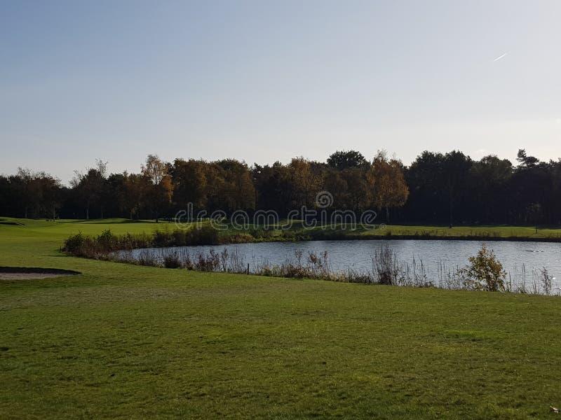 Golfgolfbanafarleder och gräsplaner arkivfoto