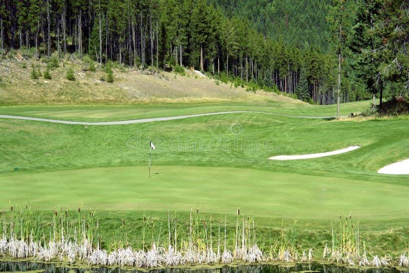 Golfgräsplan arkivbild