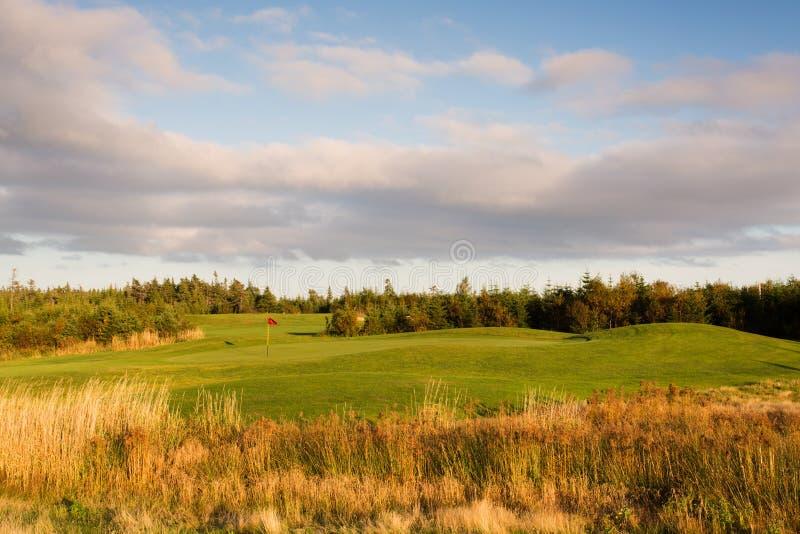Golfgräsplan från faran royaltyfri bild