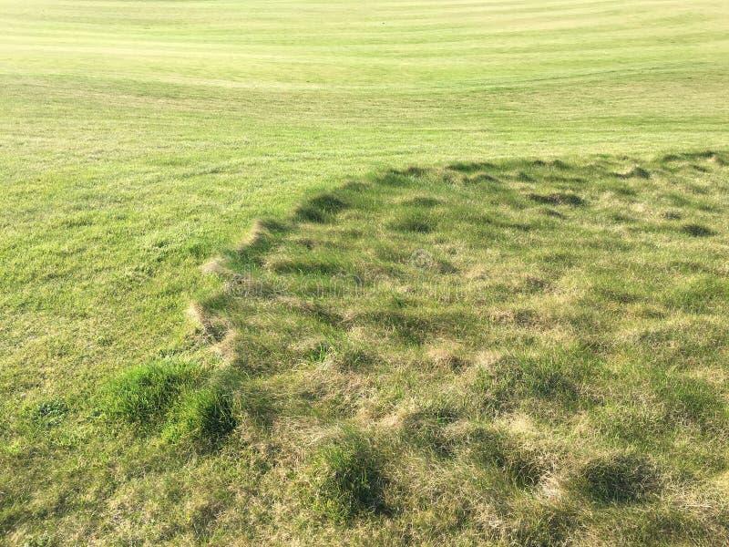 Golfgräsplan med bunker i eftermiddagsolljus Panoramautsikt av golfgräsplan med vita sandfällor Golfbanaflygparad fotografering för bildbyråer