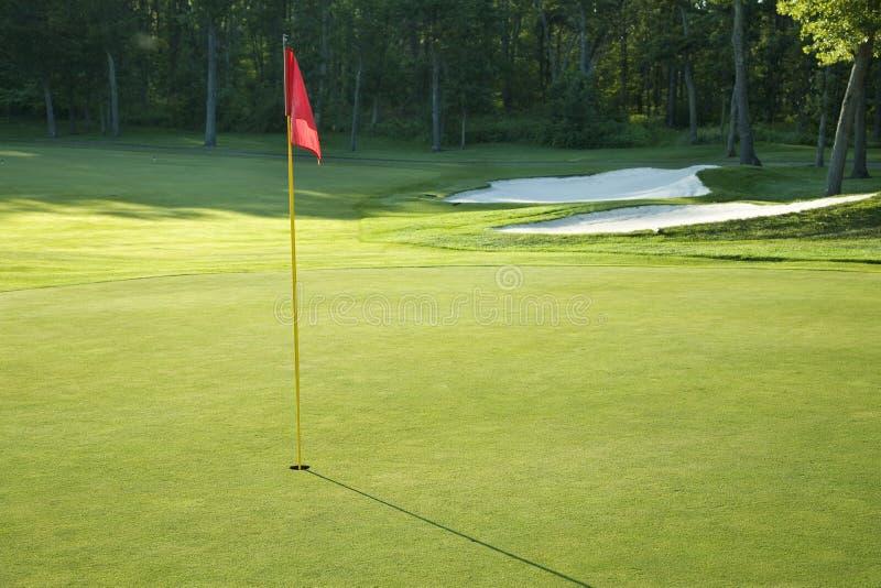 Golfgräsplan med den röda flaggan i solljus för sen eftermiddag royaltyfri fotografi