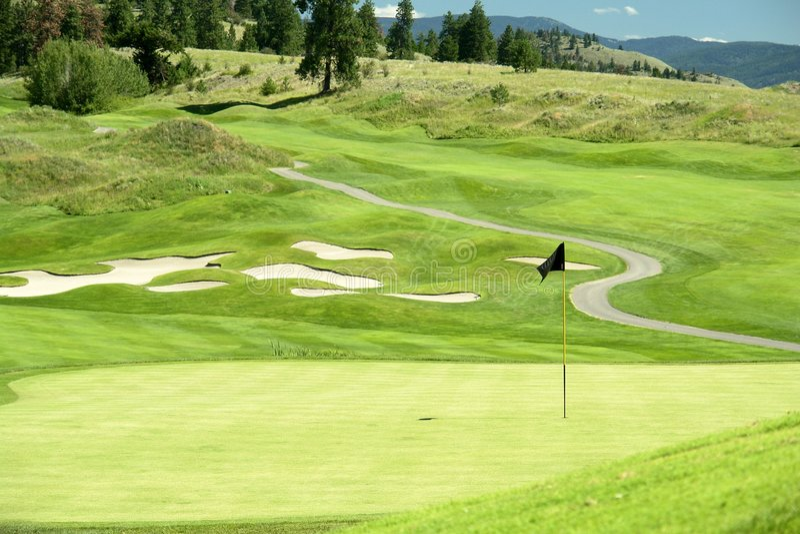 golfgreen royaltyfria bilder