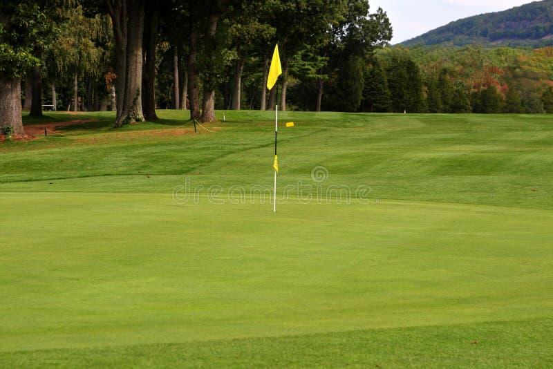 golfgreen arkivbilder