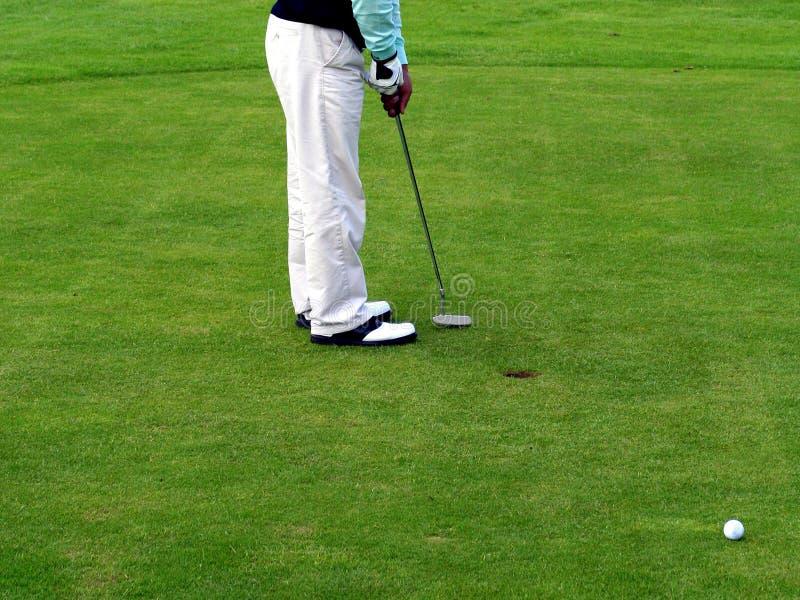 golfhasnlycka t royaltyfri bild