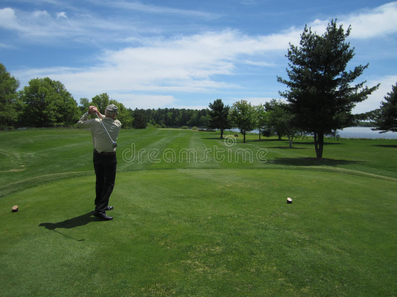 Download Golfing stock image. Image of golf, golfer, trees, course - 39508439