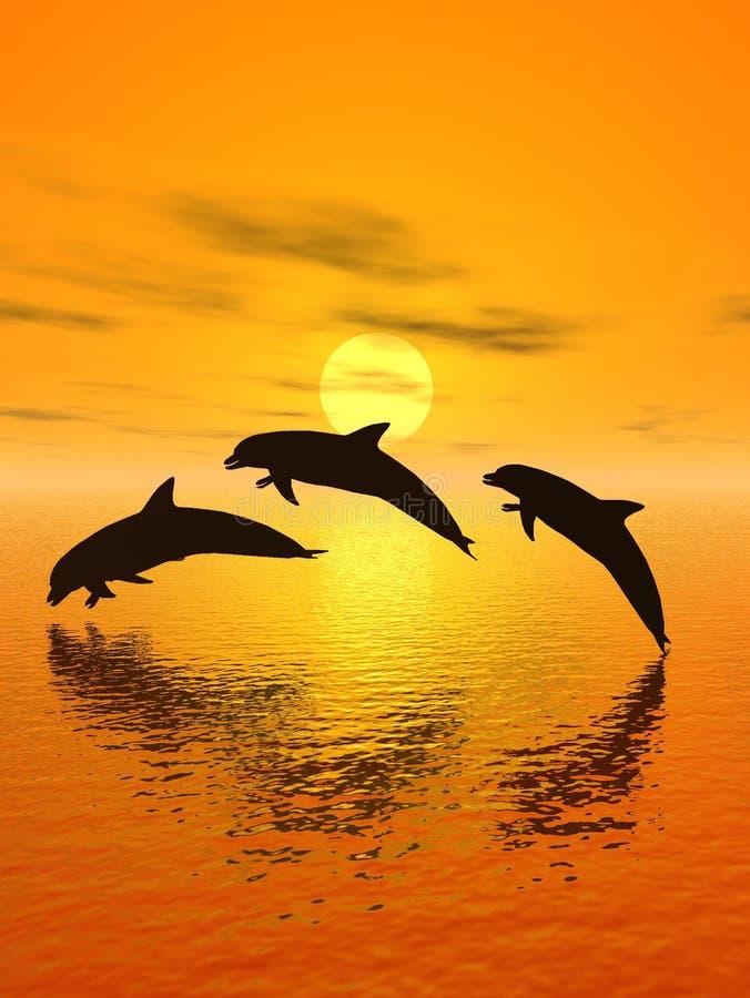 Golfinho e por do sol ilustração stock