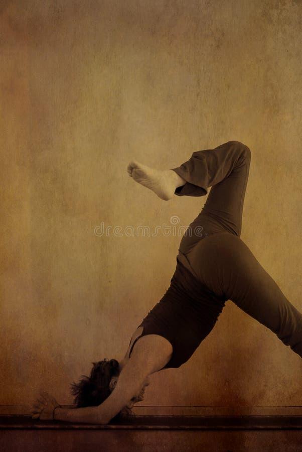 Golfinho da ioga imagens de stock