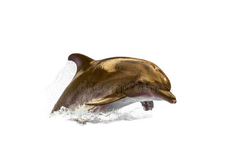 Golfinho de bottlenose rápido selvagem de salto Animal nadador no fundo branco fotos de stock royalty free