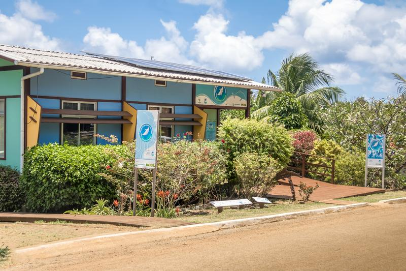 Golfinho Rotador锭床工人海豚Boldro村庄的-费尔南多・迪诺罗尼亚群岛, Pernambuco,巴西项目总部 免版税库存图片