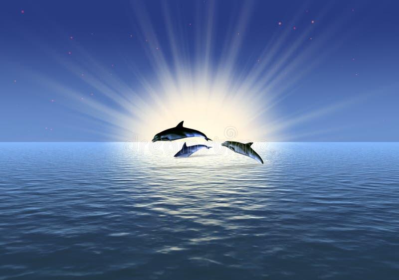 Golfinho três ilustração stock