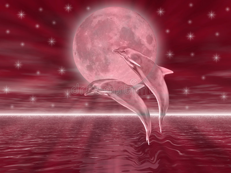 Golfinhos ilustração stock