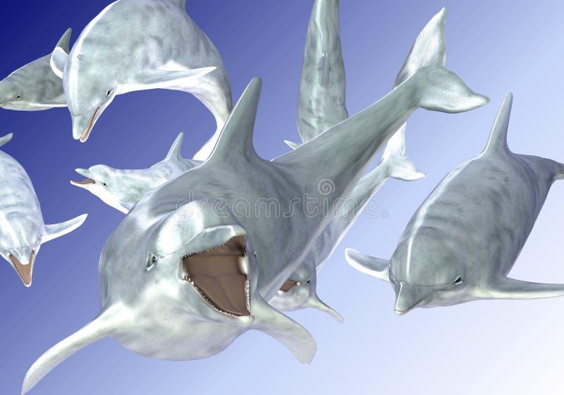 Golfinhos felizes que nadam ilustração royalty free