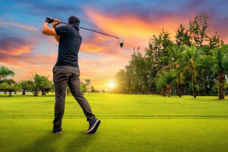 Golfista que pone la pelota de golf en el golf verde, llamarada en tiempo determinado de la tarde del sol, golfista de la lente q imágenes de archivo libres de regalías