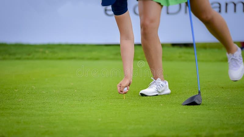 Golfista que pone la pelota de golf en la hierba verde para que espacio abierto del control agujeree imagenes de archivo