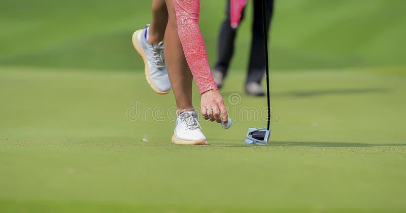 Golfista que pone la pelota de golf en la hierba verde para que espacio abierto del control agujeree fotos de archivo libres de regalías