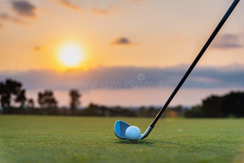 Golfista stawia pi?k? golfow? na zielonej trawie przy polem golfowym dla trenowa? robi? dziur? z plamy t?em a zdjęcia stock