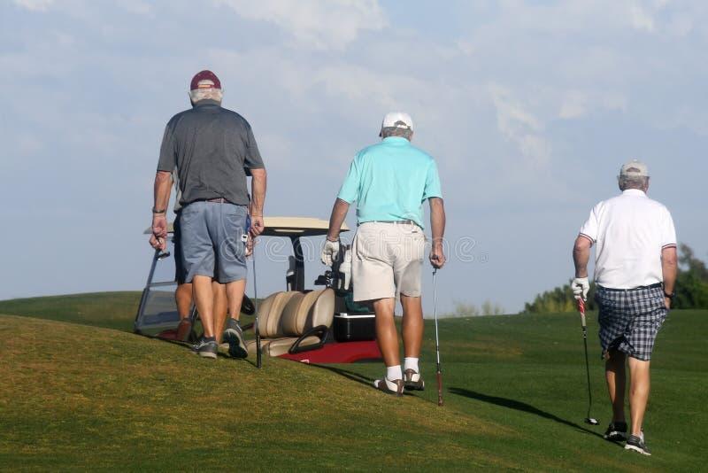 Golfistas de sexo masculino en putting green fotos de archivo