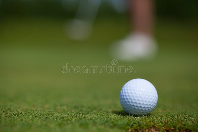 Golfisty klapanie Wewnątrz obrazy royalty free
