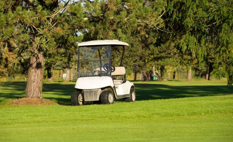 Golfkarren op een golfcursus royalty-vrije stock afbeeldingen