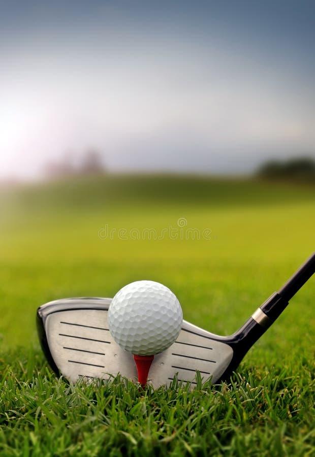 Golfklubb och boll i gräs royaltyfri foto