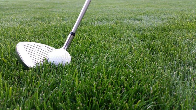 Golfklubb som slår en golfboll i grönt gräs royaltyfri fotografi