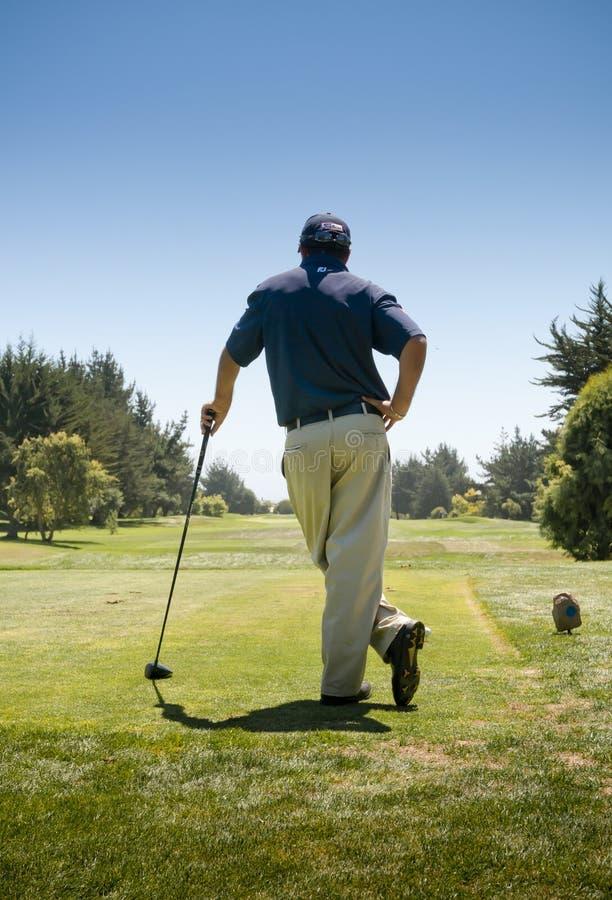 Golfmästerskap royaltyfri fotografi