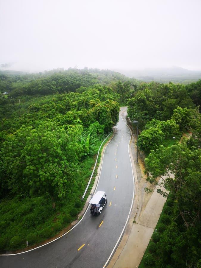 Golfmobil auf der grünen Straße stockfoto