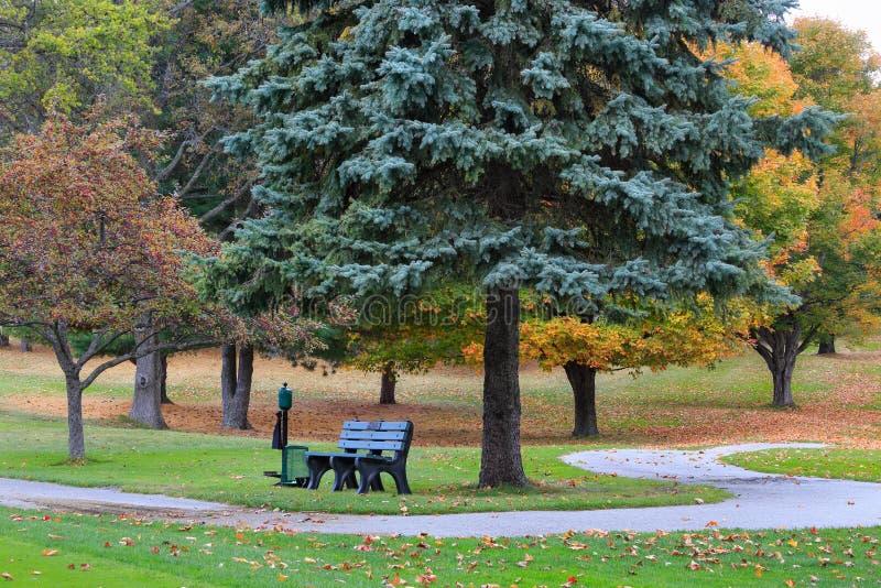 Golfmobil-Weg und Bank im Herbst stockfoto