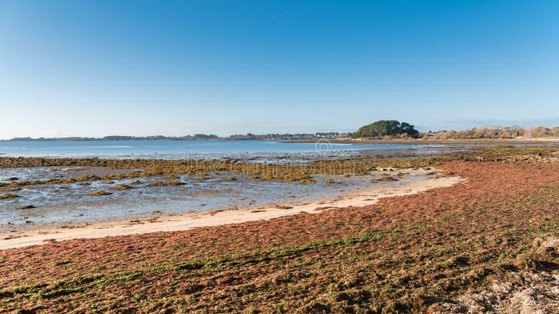 Golfo de Morbihan, em Brittany fotos de stock