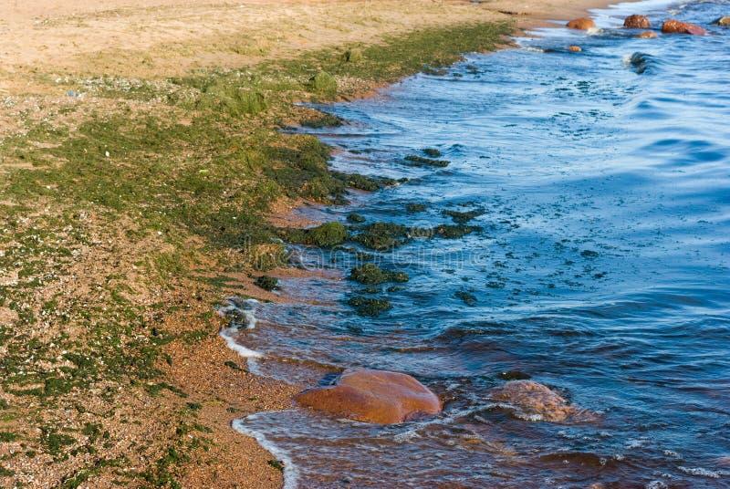 Golfo do litoral de Finlandia fotografia de stock