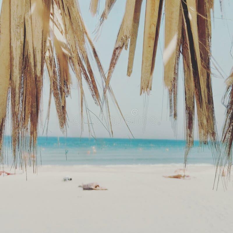 Golfo persico di Beatch Dubai fotografie stock