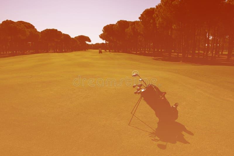 Golfpåse på kurs royaltyfri foto
