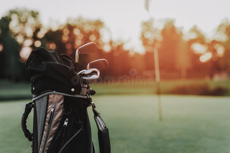 Golfpinne och golfboll på ställning på grönt fält arkivbild