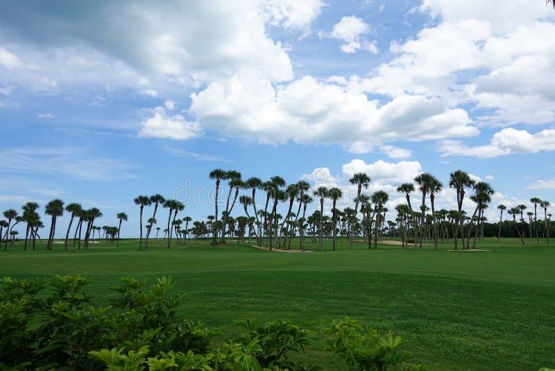 Golfplatz auf dem Ozean lizenzfreie stockfotos
