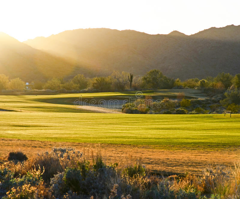 Golfplatz bei Sonnenuntergang stockbild