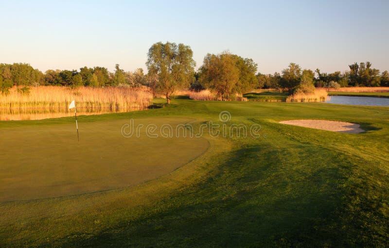 Golfplatz mit grünem Gras und Bäumen stockfoto