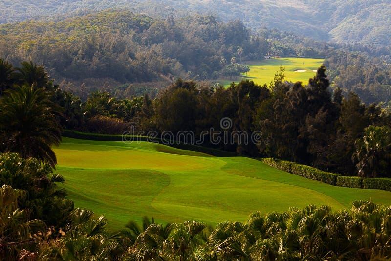 Golfplatz mit nettem Grün lizenzfreie stockfotografie