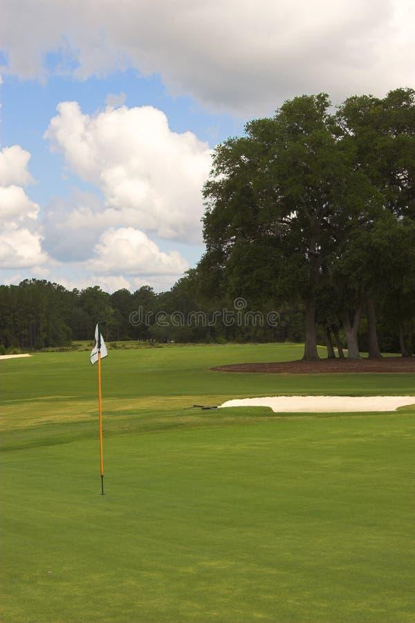 Golfplatzgrün und -stift stockbilder