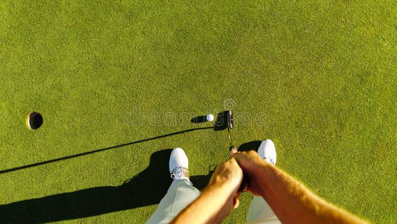 Golfspelare på den sättande gräsplanen som slår bollen in i ett hål royaltyfria bilder