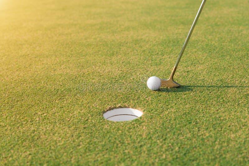 Golfspelare på den sättande gräsplanen som slår golfboll in i ett hål royaltyfria foton