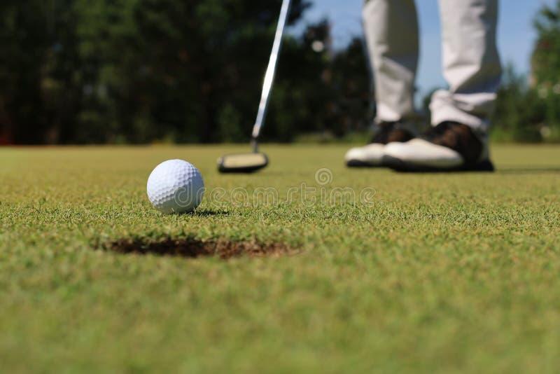 Golfspelare p? den s?ttande gr?splanen som sl?r bollen in i ett h?l arkivbild